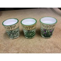 Herb Garden Set of 3 Sampler Holders