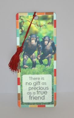 Chimpanzee - There is no gift as ....